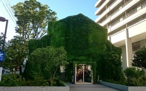 蔦の絡まるレンガの館